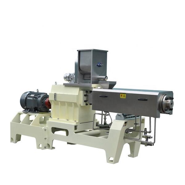 Twin Screw Fish Feed Pet Food Extruder Machinery #1 image